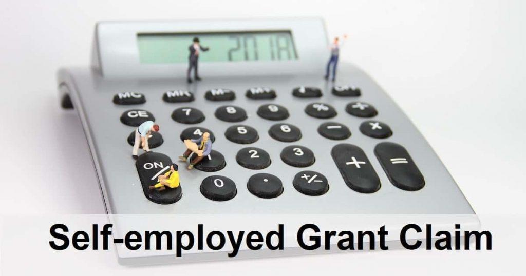 Self Employed Grant Calculator